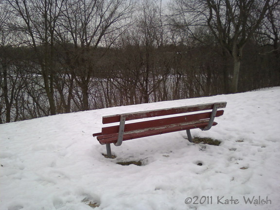 A Red Bench and a View