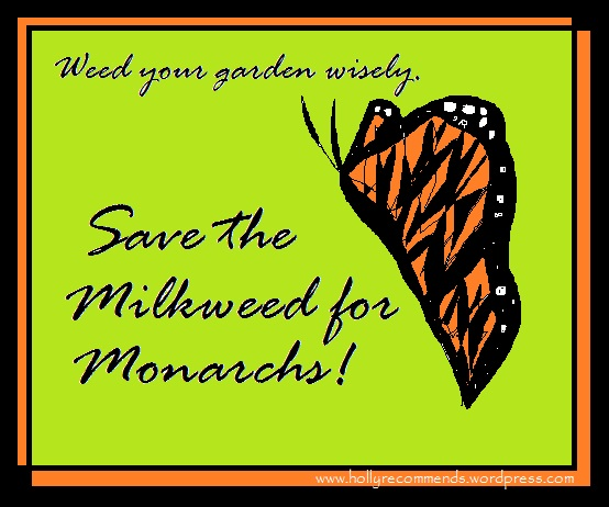 Weed your garden wisely. Save the milkweed for monarchs. Graphic by Holly Tierney-Bedord. Feel free to spread the word to save monarch butterflies.